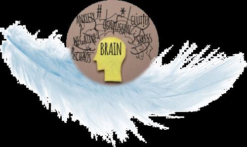 Annulé    TDAH Adultes - Cerveau & Fonctionnement TDAH